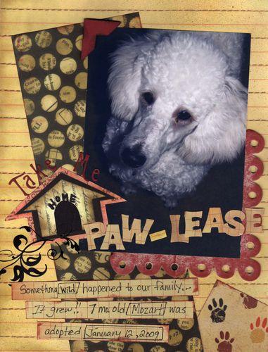 Take Me Home Paw-lease by Karen
